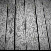 Eau de pluie_1